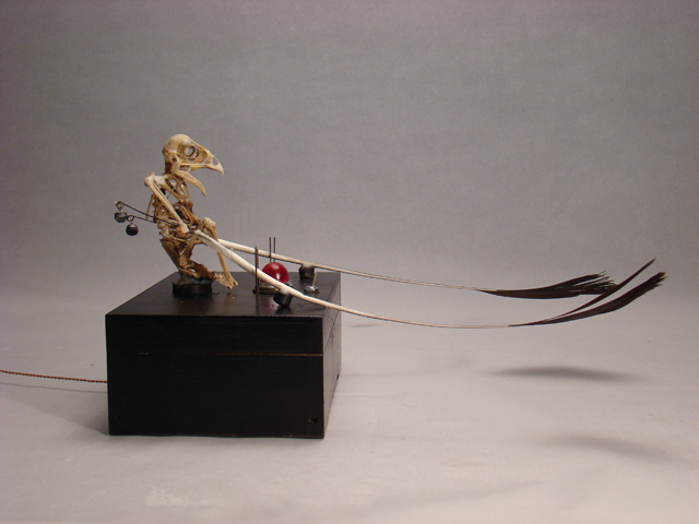small animated falcon sculpture kinetic artist zwanikken